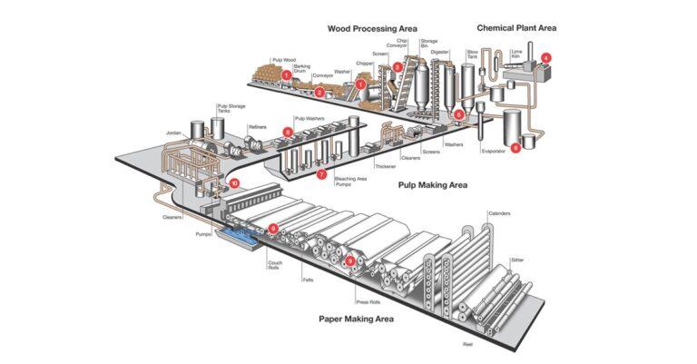 Pulp & Paper process image